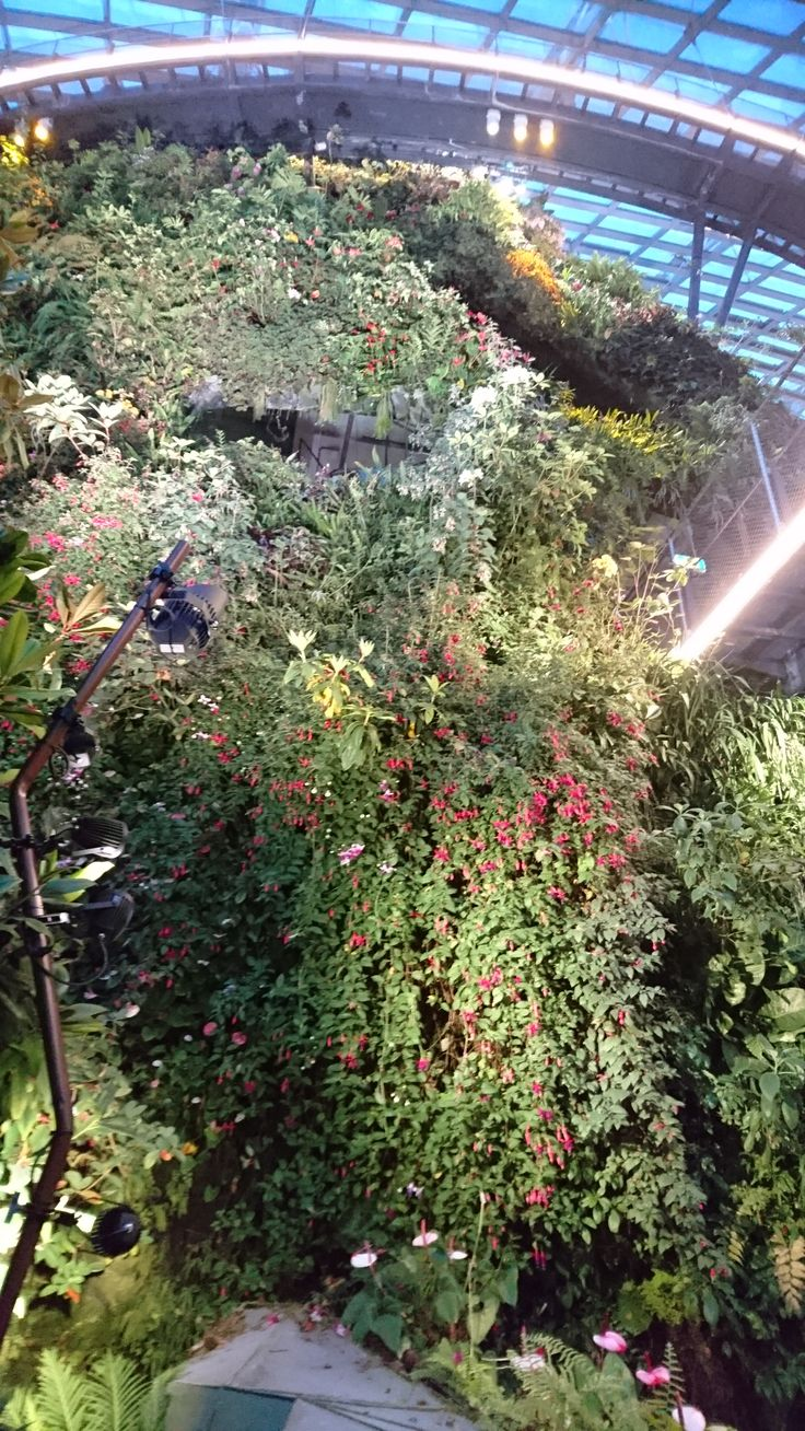 Livewall green wall system make conferences more comfortable - Cloud Forest Garden Of The Bay Singapore