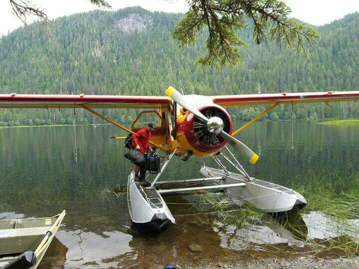 Another cool place to go in a Beaver