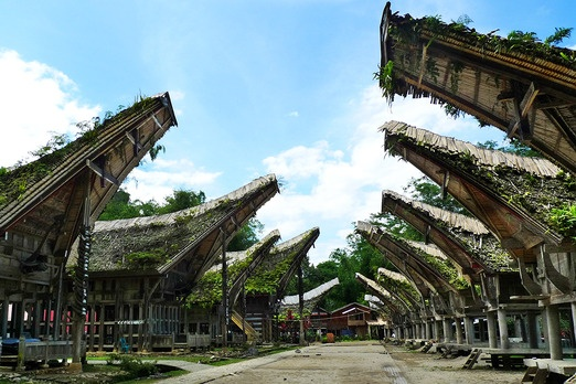 Tongkonan, the Toraja traditional house. Its roof is shaped like a boat and it was built as a symbol of authority and we...