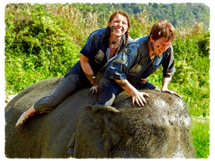 The Chiang Mai Elephant Camp, Thailand