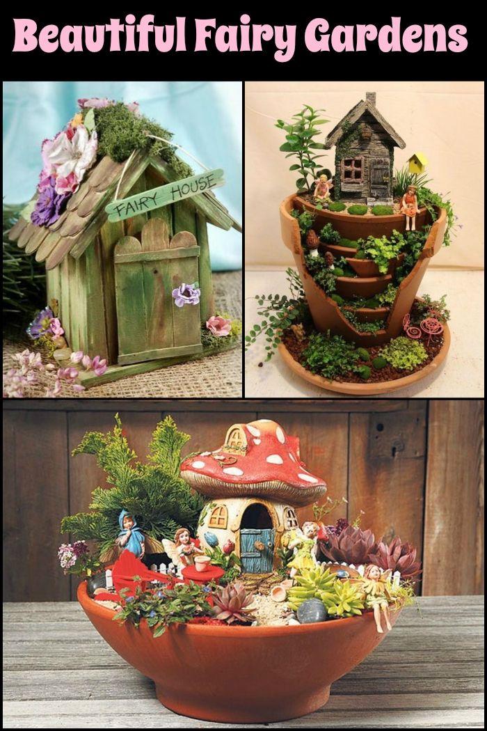 Fairy Gardens 48 best Fairy Gardens images