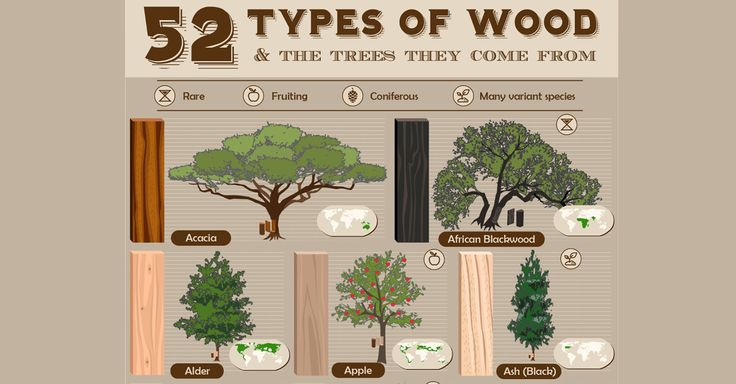 Gallery of 52 Types of Wood and the Trees They Come From - 1