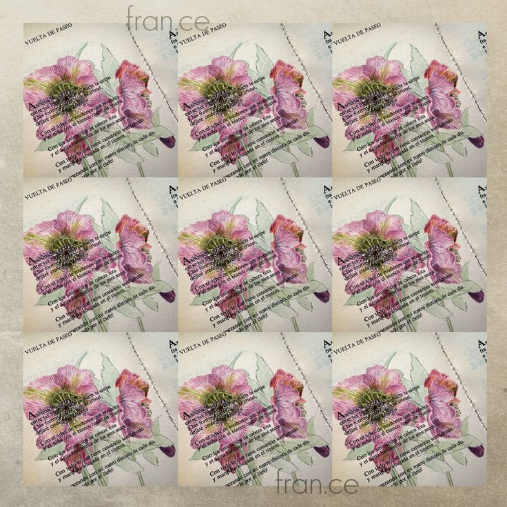 #helleborus #hellebore #elleboro #watercolors #botanicalart