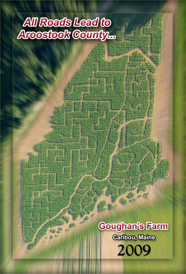 Annual corn maze takes form of a