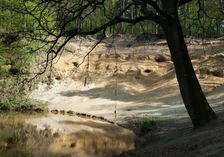 """Natuurgebied het Leudal staat bekend om zijn """"Litzberg""""."""