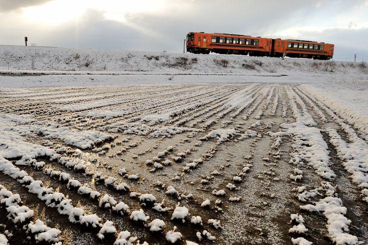 なごり雪の画像(写真)