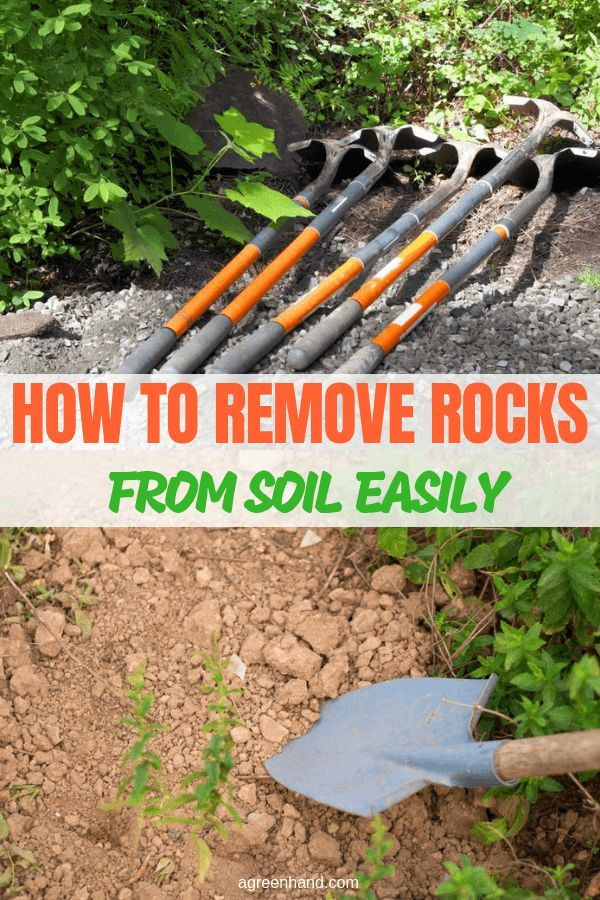 How To Remove Rocks From Soil Easily Garden Soil Garden Tools Vegetable Garden Tips