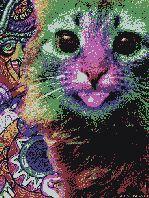 Psychedelic Acid Lsd Acid Trip Psychopath Lsd Trip Lsd Effect Acid Trance Lsd Dream Theatre