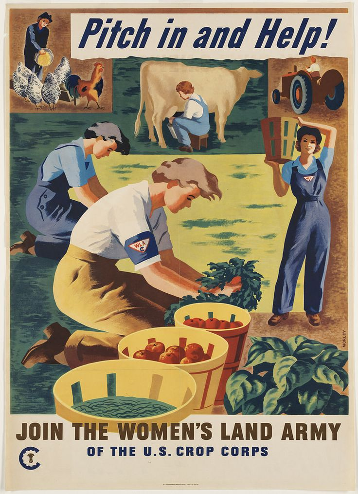 World War II poster, 1944: Pitch in and help! Join the Women's Land Army of the U.S. Crop Corps. Artist: Hubert Morley. Sponsor: Women's Land Army of America. Created/Published: U.S. Govt Printing Office. via Boston Public Library. #history #americanhistory #WWII