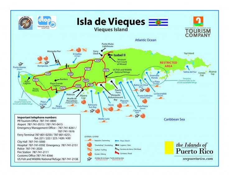 Vieques   Vieques Travel Information - Getting to Vieques   Puerto Rico Small ...