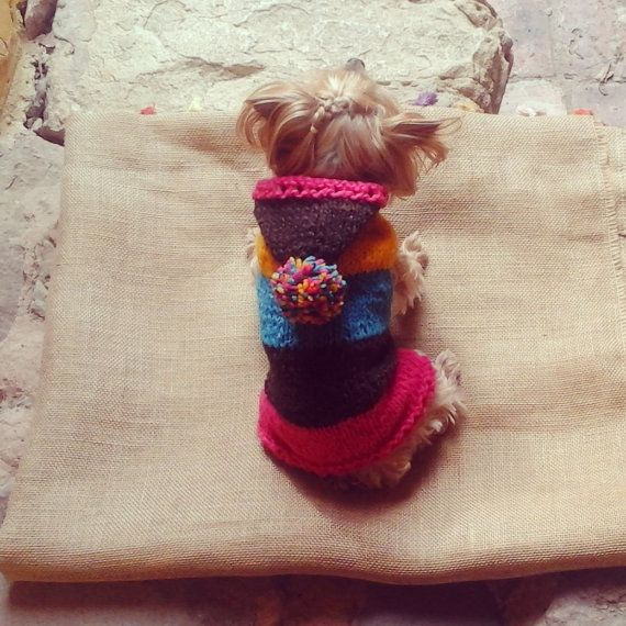 Hand-knit Dog Sweater / Yellow  Blue  Brown & Pink by CasaLunaCo