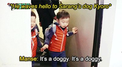 Manse greets Kyoro | The Return of Superman