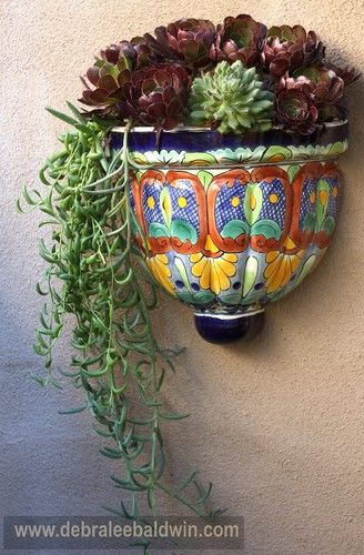 Succulents spill from a brilliantly coloured wall planter