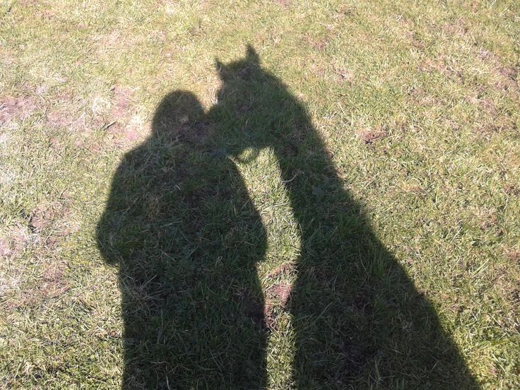 Mine & Shandy's shadows :)