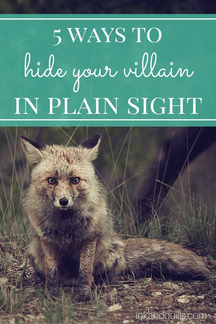 Sometimes, you want to hide the bad guys in your story to fool your readers--and your characters! Click to learn 5 tricks for camouflaging your villain!