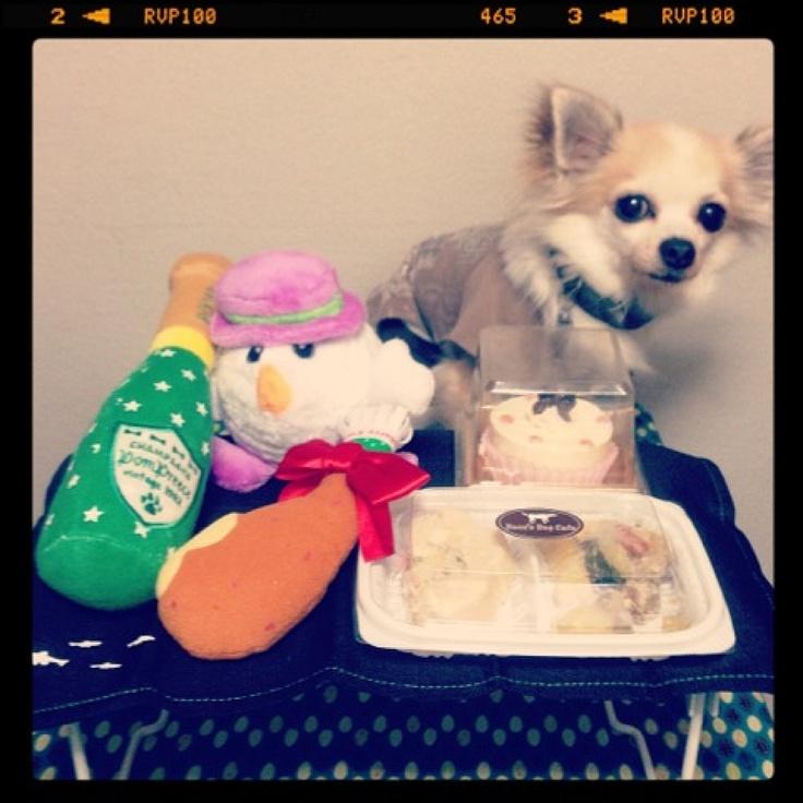 [OREO♥❶BD*2012/12/12]    OREO ✮ 9-year-old birthday ᓭིू•̫͡• ूᓯྀ     チキンロールプレートとケーキでお祝いわんっ     クリスマスチックな?おもちゃも☃     おめっとぉー
