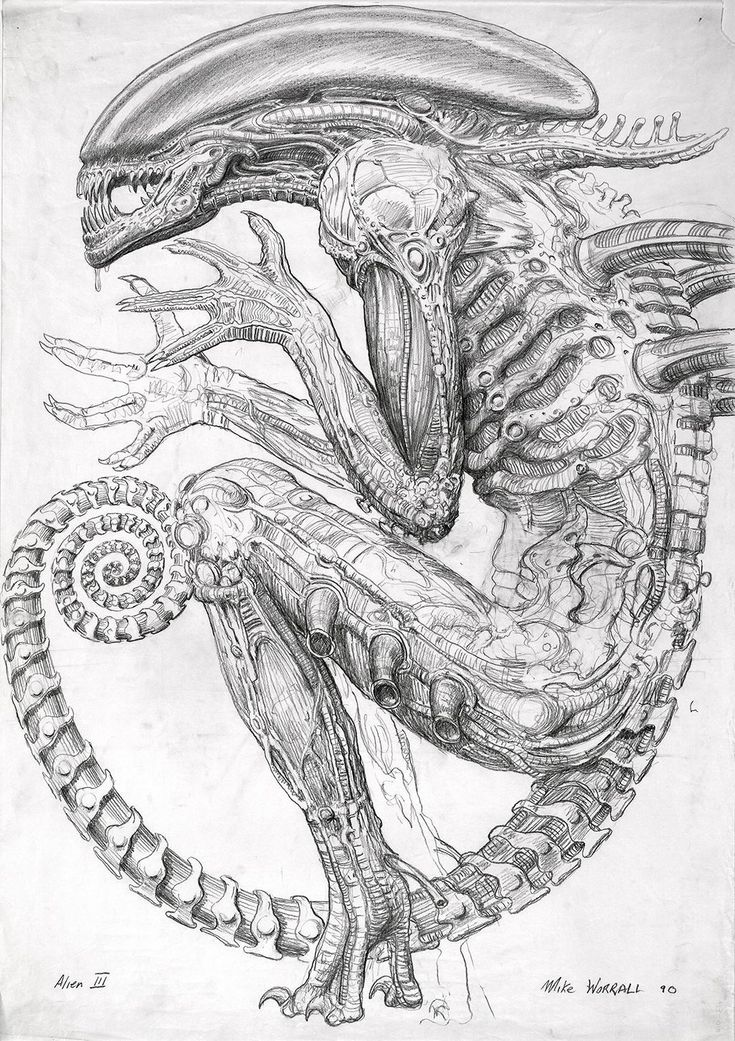 Never-Before-Seen Sketches That Inspired the Birth of Alien | WIRED #Aliens
