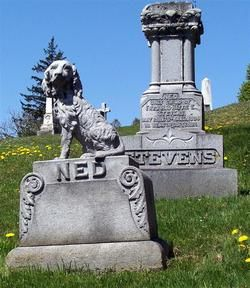 Ned Stevens 1875 - 1894.  Only child of Fred R.  Hattie E. Stevens.  Their shared headstone is on the back right side. - Green Mount Cemetery, Montpelier,  Vermont