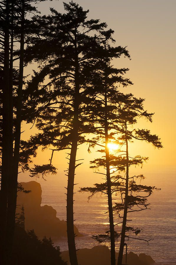 ✯ Ecola Point Sunset - Oregon
