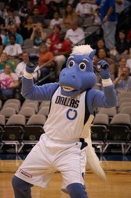 Champ the Horse, Dallas Mavericks