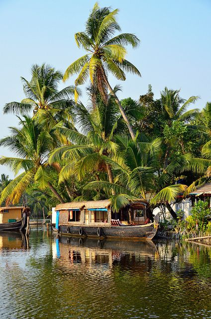 The Backwaters, Kochi, India