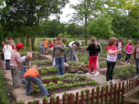 """Kids always enjoy working in gardens. Especially when it's harvest time.  Slow Food Deutschland e.V. ~ """"Unser"""" Schulgarten 2009: Ein schöner Garten zum Essen"""