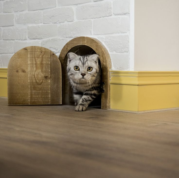 an arched doorway built for #cats in a loft apartment in taiwan #interiordesign & 45 best Cat Door images on Pinterest | Pet door Cat furniture and ... Pezcame.Com