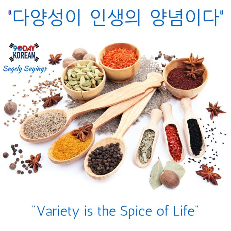 variety is a spice of life essay Short essay on humour is the spice of life click to continue home uncategorized how to write an essay on my pet nov 2011 fond review my favorite pet.