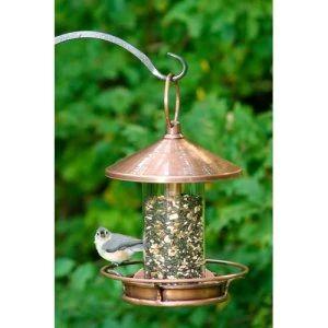 Birdfeeders on Hayneedle - Best Bird Feeders for Sale