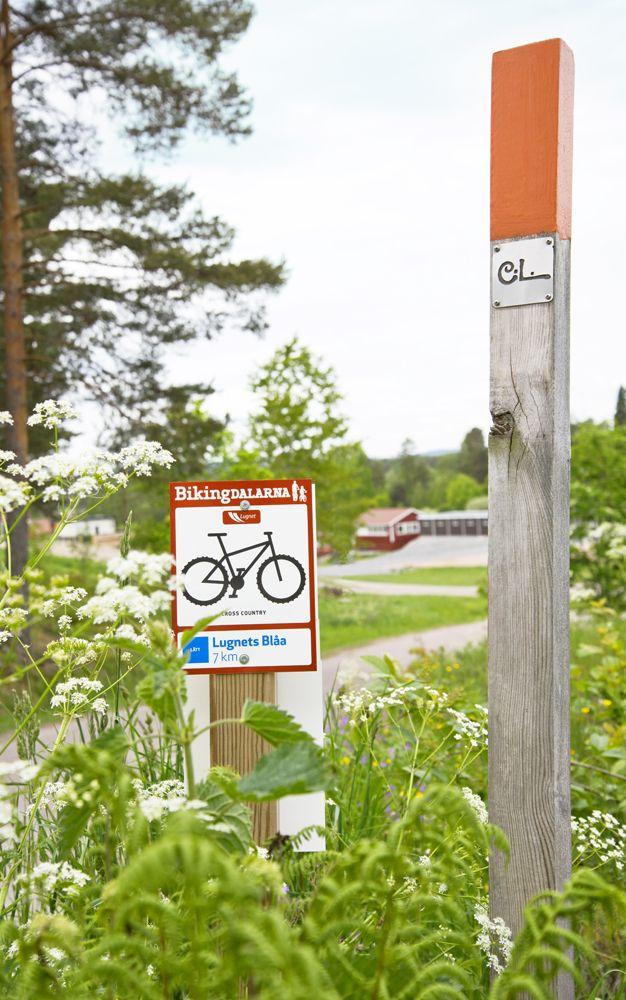 Fina markerade cykelleder för MTB på Lugnet