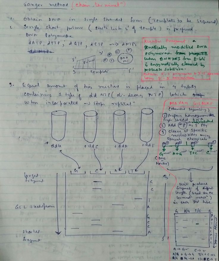 history of dna sequencing biology essay In the last fifty years, traditional dna sequencing techniques were positively evolved to determine the dna sequences of organisms communities.