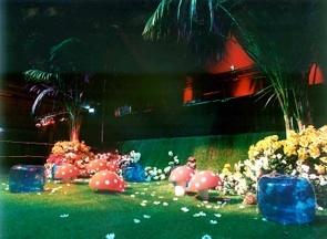 EVDG MTC parties 1998 / Mushroom Gardens