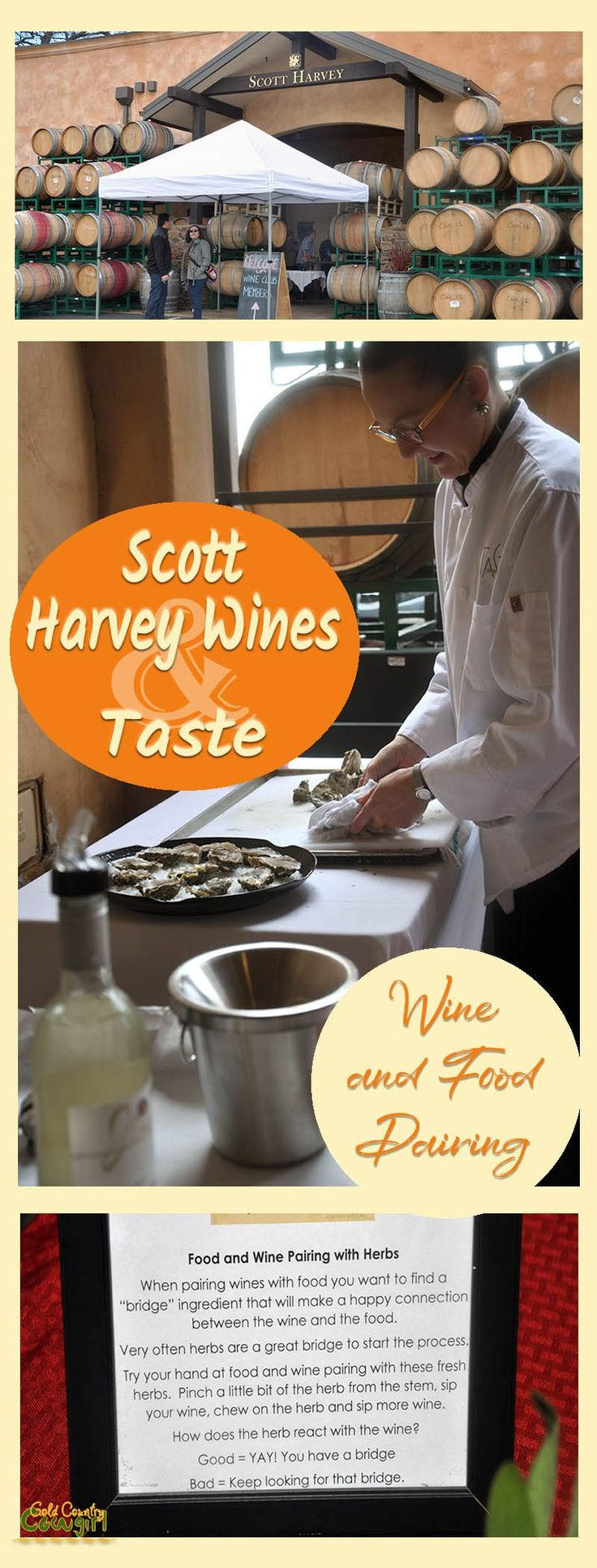 The Scott Harvey Wines and Taste Restaurant wine and food pairing for wine club members and guests was a hit. Wine club membership has its privileges! Wineries of Gold Country. Gold Country restaurants.