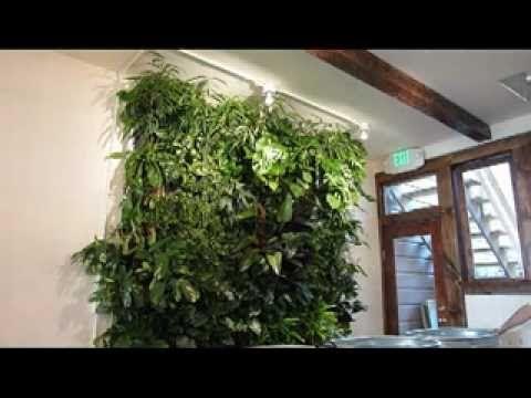 die besten 25 kleiner gr ner kaktus ideen auf pinterest ein kleiner gr ner kaktus kaktus. Black Bedroom Furniture Sets. Home Design Ideas