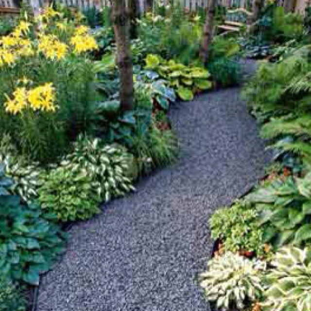 Gravel Path And Hostas Yard Garden Pinterest Paths