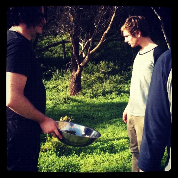 The boys having a good forage #rueclermarket #geelong #bellarine - @rueclermarket- #webstagram