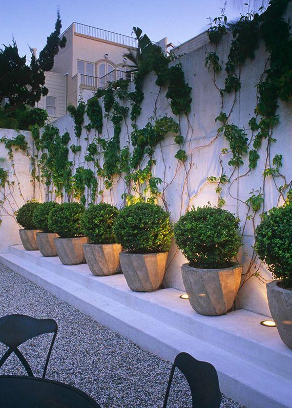 Zaun und Mauer im Garten als ein lebendiger Akzent