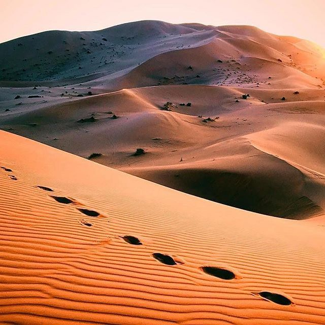 #Repost @david_portela ・・・ Good morning form the Sahara! #bosdias #sahara ☀️ #desert #morocco #merzouga