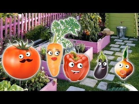 Vegetables Lollipop Finger Family   Nursery Rhymes and More Lyrics - RoRo Fun Channel Youtube  #Masha   #bear   #Peppa   #Peppapig   #Cry   #GardenKids   #PJ  Masks  #Catboy   #Gekko   #Owlette   #Lollipops  #MashaAndTheBear  Make sure you SUBSCRIBE Now For More Videos Updates:  https://goo.gl/tqfFEb Have Fun with made  by RoRo Fun Chanel. More    HOT CLIP: Masha And The Bear with PJ Masks Catboy Gekko Owlette Cries When Given An Injection  https://www.youtube.com/watch?v=KVEK6Qtqo9M Masha…