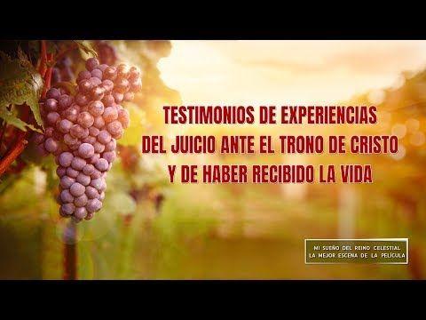 (V) - Testimonios de experiencias del juicio ante el trono de Cristo y de haber recibido la vida | Iglesia de Dios Todopoderoso #VideosCristianos  #MisteriosDeLaBiblia  #Testimonio
