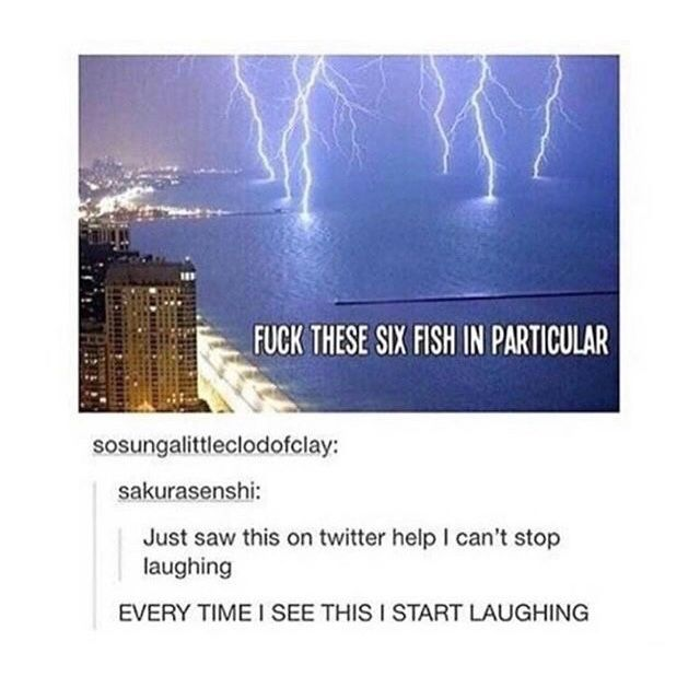 I BET THAT'S ZEUS AND POSEIDON ARGUING AND ZEUS FOUND OUT WHAT POSEIDON'S FAVOURITE FISH ARE AND NOW HES DOING THAT