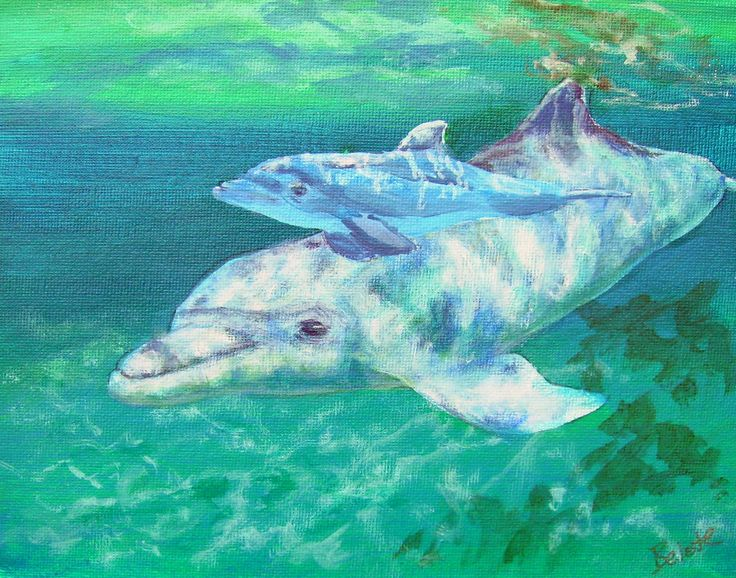 study of dolphins Dolphins can carry on conversations in an advanced spoken language made up  of pulses and whistles, a new study has found while marine.
