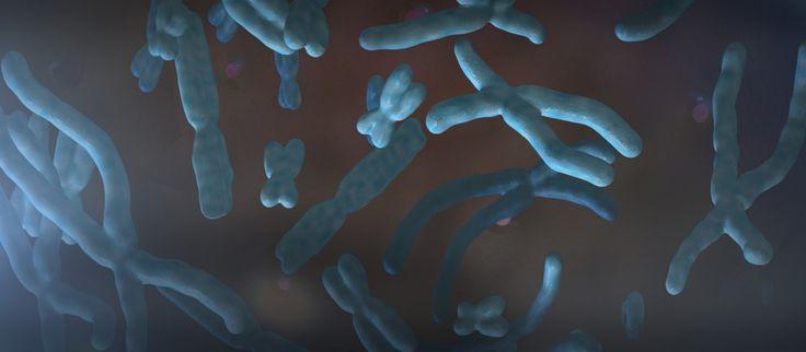 μοριακή βιολογια