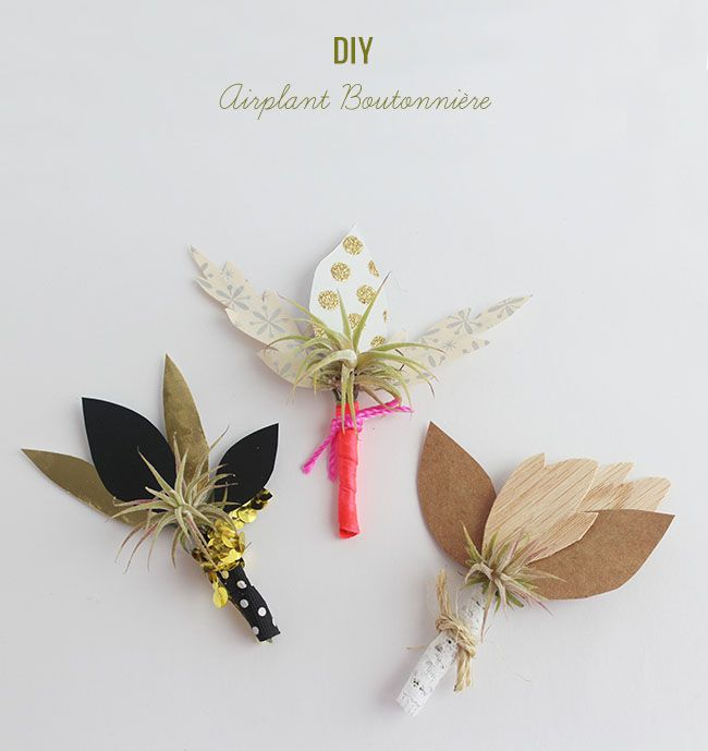 DIY Airplant Boutonniere