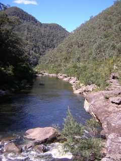 Faulconbridge Ridge to the Grose River - Bushwalking NSW