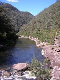 Faulconbridge Ridge to the Grose River - Bushwalking NSW