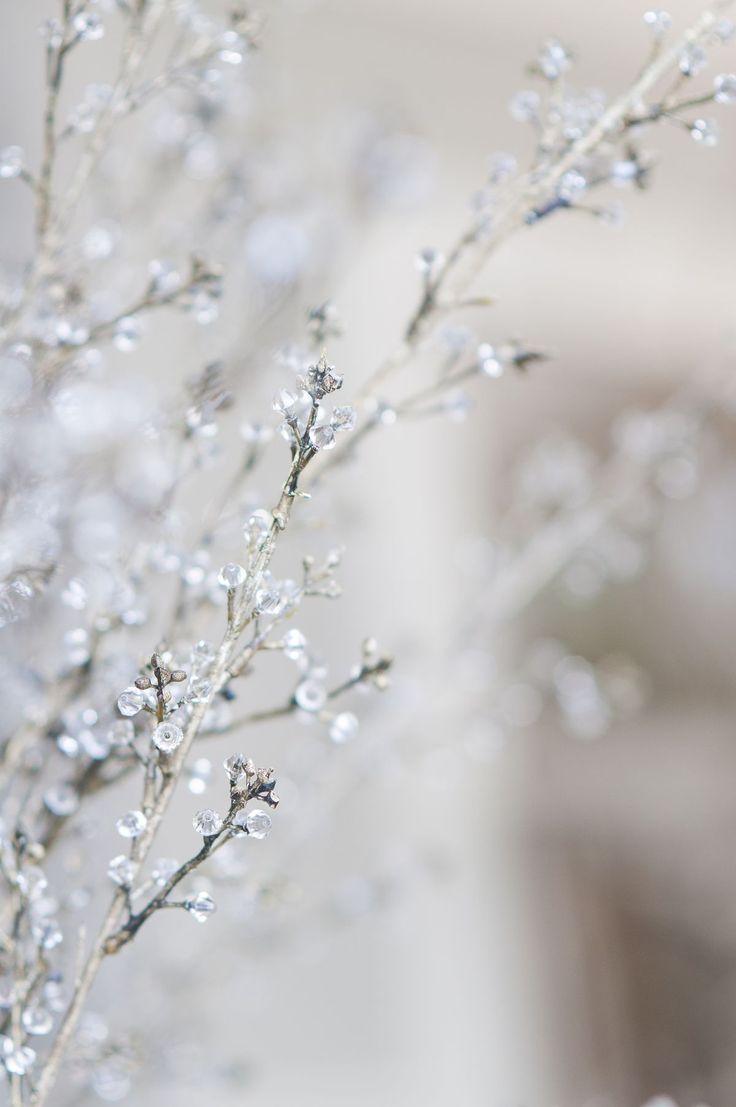 17 best images about winter on pinterest winter wonderland