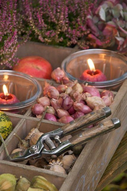 Buitenleven   Genieten van jouw herfst tuin - Woonblog www.StijlvolStyling.com
