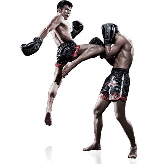 Papo de B.F: Healthy Lifestyle - Muay Thai