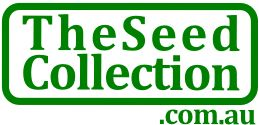 TheSeedCollection Home